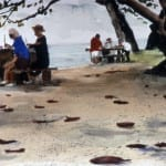 Watercolor Workshop, Anini Beach, Kauai, HI